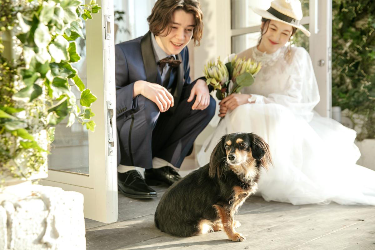 【わんちゃんと一緒に】大切な家族と過ごすペット婚相談会